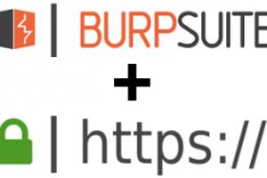 burp-https