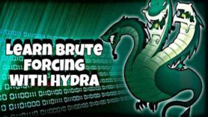 Intro to THC Hydra