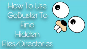How To Use GoBuster To Find Hidden Files/Directories