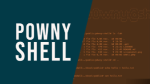 Introduction to p0wny Shell - Tiny PHP Reverse Shell
